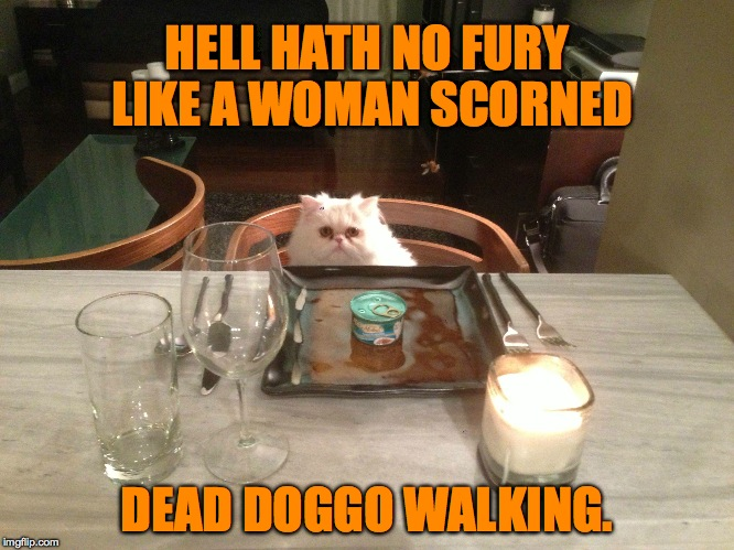 HELL HATH NO FURY LIKE A WOMAN SCORNED DEAD DOGGO WALKING. | made w/ Imgflip meme maker