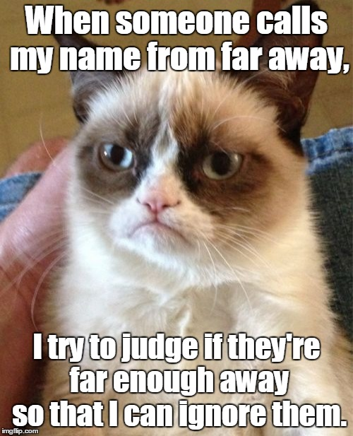 Grumpy Cat Meme | When someone calls my name from far away, I try to judge if they're far enough away so that I can ignore them. | image tagged in memes,grumpy cat | made w/ Imgflip meme maker