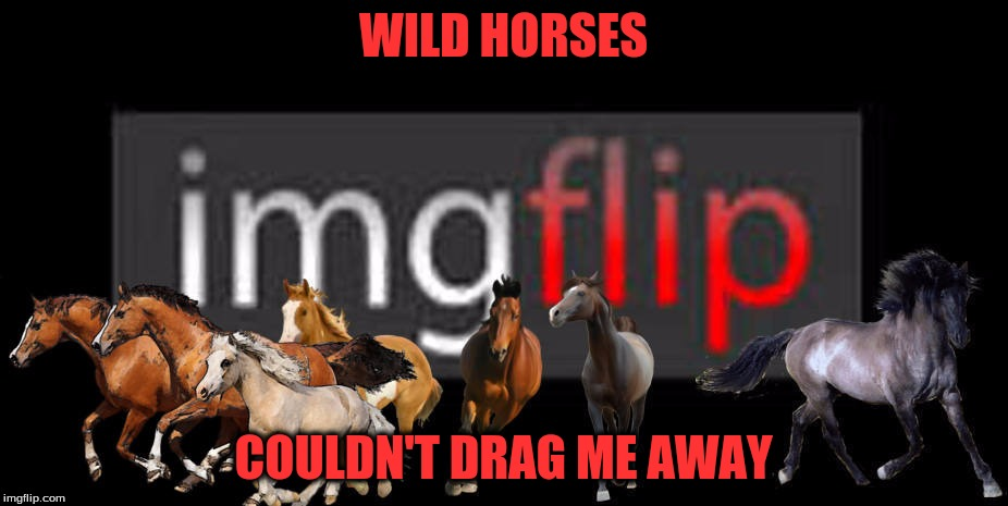 Not Enough Horsepower | WILD HORSES COULDN'T DRAG ME AWAY | image tagged in memes,imgflipper,custom template | made w/ Imgflip meme maker