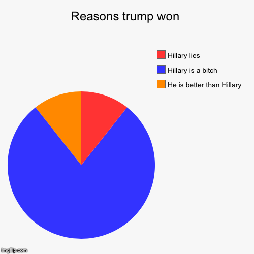 Reasons trump won | He is better than Hillary , Hillary is a b**ch, Hillary lies | image tagged in funny,pie charts | made w/ Imgflip pie chart maker