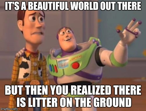 X, X Everywhere Meme |  IT'S A BEAUTIFUL WORLD OUT THERE; BUT THEN YOU REALIZED THERE IS LITTER ON THE GROUND | image tagged in memes,x x everywhere | made w/ Imgflip meme maker