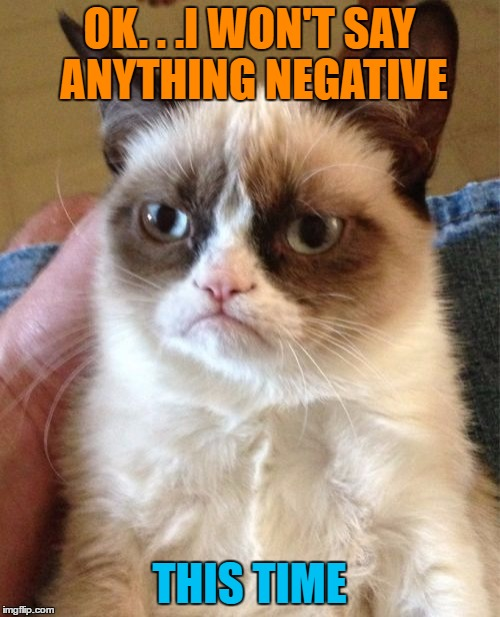Grumpy Cat Meme | OK. . .I WON'T SAY ANYTHING NEGATIVE THIS TIME | image tagged in memes,grumpy cat | made w/ Imgflip meme maker