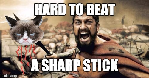 HARD TO BEAT A SHARP STICK | made w/ Imgflip meme maker