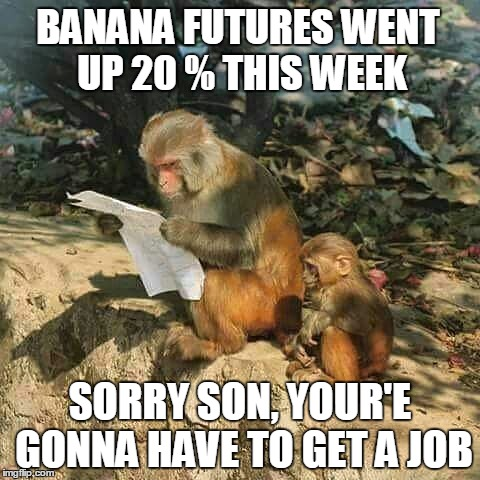 The economy is tough everywhere. | BANANA FUTURES WENT UP 20 % THIS WEEK SORRY SON, YOUR'E GONNA HAVE TO GET A JOB | image tagged in politics,economics,bananas,banana week,monkey business,not my monkeys | made w/ Imgflip meme maker