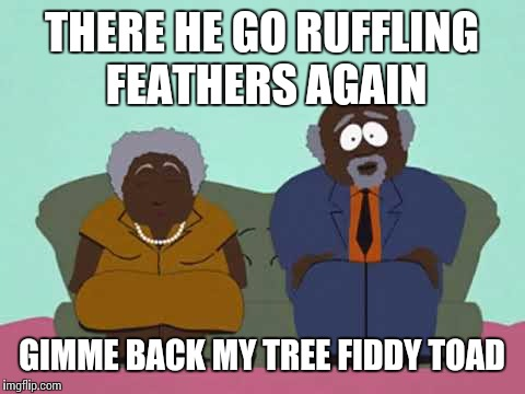 THERE HE GO RUFFLING FEATHERS AGAIN GIMME BACK MY TREE FIDDY TOAD | made w/ Imgflip meme maker