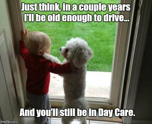 Dog years | Just think, in a couple years I'll be old enough to drive... And you'll still be in Day Care. | image tagged in dogs | made w/ Imgflip meme maker