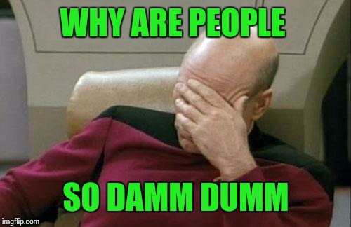 Captain Picard Facepalm Meme | WHY ARE PEOPLE SO DAMM DUMM | image tagged in memes,captain picard facepalm | made w/ Imgflip meme maker
