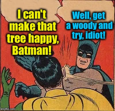Batman Slapping Robin Meme | I can't make that tree happy, Batman! Well, get a woody and try, idiot! | image tagged in memes,batman slapping robin | made w/ Imgflip meme maker