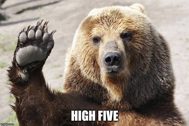 High Five Bear | HIGH FIVE | image tagged in high five bear | made w/ Imgflip meme maker