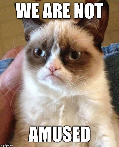 Grumpy Cat Meme | WE ARE NOT AMUSED | image tagged in memes,grumpy cat | made w/ Imgflip meme maker