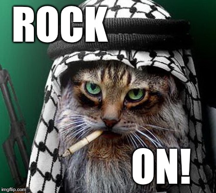 Sarcastic Terrorist Cat | ROCK ON! | image tagged in sarcastic terrorist cat | made w/ Imgflip meme maker