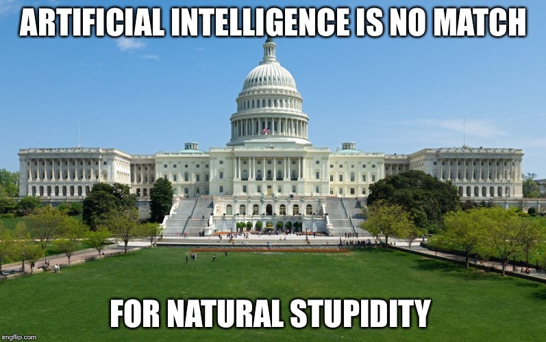 capitol hill | ARTIFICIAL INTELLIGENCE IS NO MATCH FOR NATURAL STUPIDITY | image tagged in capitol hill | made w/ Imgflip meme maker