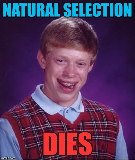 Bad Luck Brian Meme | NATURAL SELECTION DIES | image tagged in memes,bad luck brian | made w/ Imgflip meme maker
