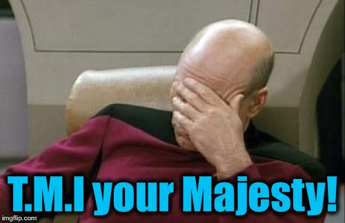 Captain Picard Facepalm Meme | T.M.I your Majesty! | image tagged in memes,captain picard facepalm | made w/ Imgflip meme maker