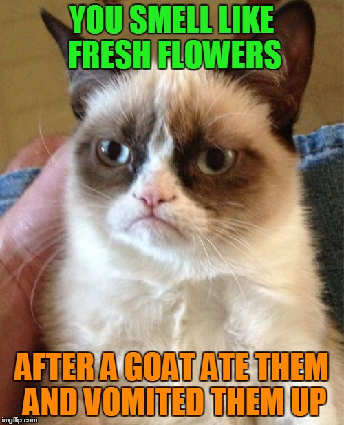 Eau de Grumpy Cat (⊙ₒ⊙) | YOU SMELL LIKE FRESH FLOWERS AFTER A GOAT ATE THEM AND VOMITED THEM UP | image tagged in memes,grumpy cat,flowers,compliment,grumpy cat insults,grumpy cat turns a compliment into an insult | made w/ Imgflip meme maker