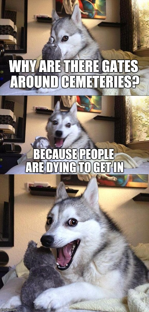 Bad Pun Dog Meme | WHY ARE THERE GATES AROUND CEMETERIES? BECAUSE PEOPLE ARE DYING TO GET IN | image tagged in memes,bad pun dog,funny,cemetery | made w/ Imgflip meme maker