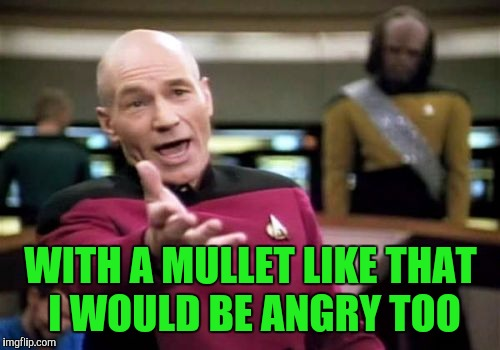 Picard Wtf Meme | WITH A MULLET LIKE THAT I WOULD BE ANGRY TOO | image tagged in memes,picard wtf | made w/ Imgflip meme maker