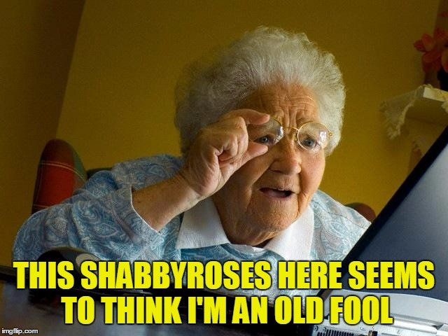 Grandma Finds The Internet Meme | THIS SHABBYROSES HERE SEEMS TO THINK I'M AN OLD FOOL | image tagged in memes,grandma finds the internet | made w/ Imgflip meme maker