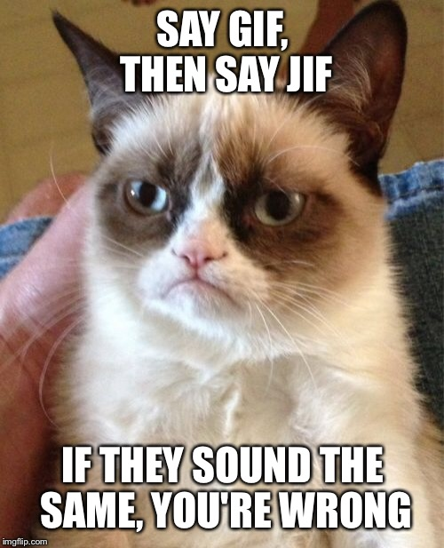 Grumpy Cat Meme | SAY GIF, THEN SAY JIF IF THEY SOUND THE SAME, YOU'RE WRONG | image tagged in memes,grumpy cat | made w/ Imgflip meme maker