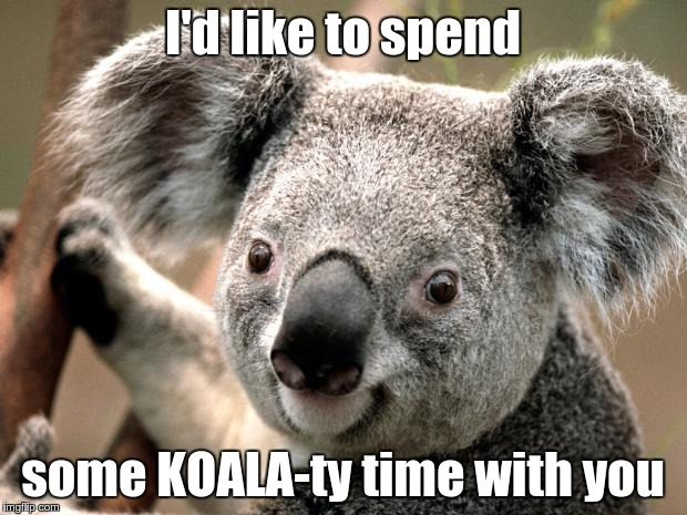 Koala pickup lines | I'd like to spend some KOALA-ty time with you | image tagged in koala,bad puns,pickup lines | made w/ Imgflip meme maker