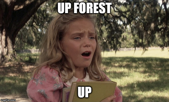 UP FOREST UP | made w/ Imgflip meme maker