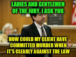 LADIES AND GENTLEMEN OF THE JURY, I ASK YOU, HOW COULD MY CLIENT HAVE COMMITTED MURDER WHEN IT'S CLEARLY AGAINST THE LAW | image tagged in steve avery lawyer | made w/ Imgflip meme maker