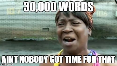 Aint Nobody Got Time For That Meme | 30,000 WORDS AINT NOBODY GOT TIME FOR THAT | image tagged in memes,aint nobody got time for that | made w/ Imgflip meme maker