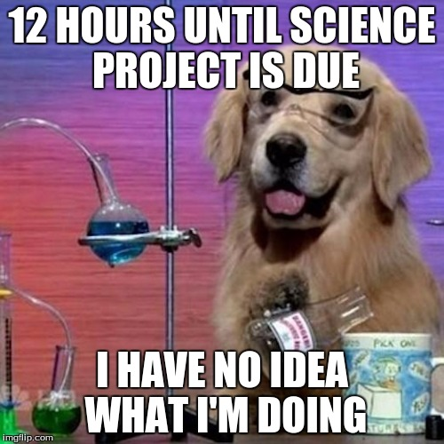 I Have No Idea What I Am Doing Dog | 12 HOURS UNTIL SCIENCE PROJECT IS DUE I HAVE NO IDEA WHAT I'M DOING | image tagged in memes,i have no idea what i am doing dog | made w/ Imgflip meme maker
