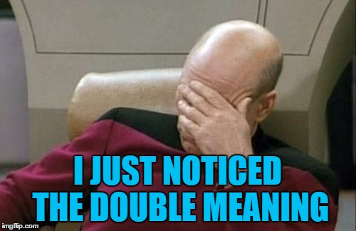 Captain Picard Facepalm Meme | I JUST NOTICED THE DOUBLE MEANING | image tagged in memes,captain picard facepalm | made w/ Imgflip meme maker