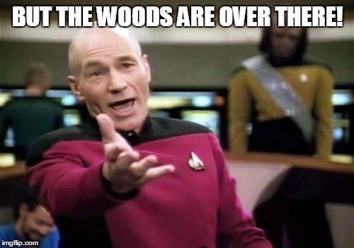 Picard Wtf Meme | BUT THE WOODS ARE OVER THERE! | image tagged in memes,picard wtf | made w/ Imgflip meme maker