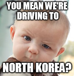 Skeptical Baby Meme | YOU MEAN WE'RE DRIVING TO NORTH KOREA? | image tagged in memes,skeptical baby | made w/ Imgflip meme maker