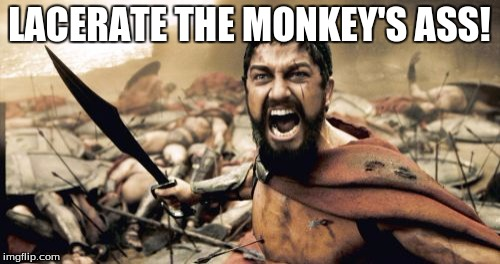 Sparta Leonidas Meme | LACERATE THE MONKEY'S ASS! | image tagged in memes,sparta leonidas | made w/ Imgflip meme maker