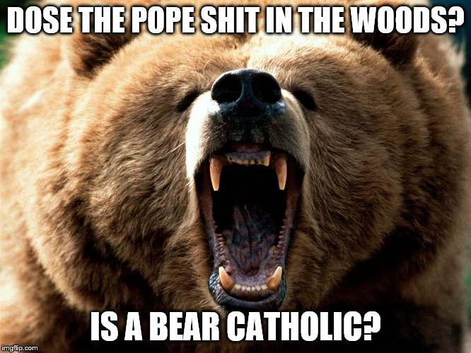 DOSE THE POPE SHIT IN THE WOODS? IS A BEAR CATHOLIC? | image tagged in raw bear | made w/ Imgflip meme maker