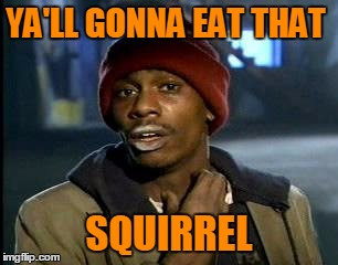 Y'all Got Any More Of That Meme | YA'LL GONNA EAT THAT SQUIRREL | image tagged in memes,yall got any more of | made w/ Imgflip meme maker