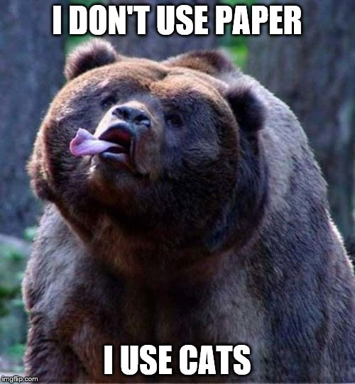 Rude Bear | I DON'T USE PAPER I USE CATS | image tagged in rude bear | made w/ Imgflip meme maker