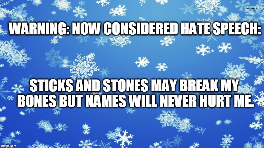 Everything is hate speech | WARNING:NOW CONSIDERED HATE SPEECH: STICKS AND STONES MAY BREAK MY BONES BUT NAMES WILL NEVER HURT ME. | image tagged in snowflakes,hate speech,safe zones | made w/ Imgflip meme maker
