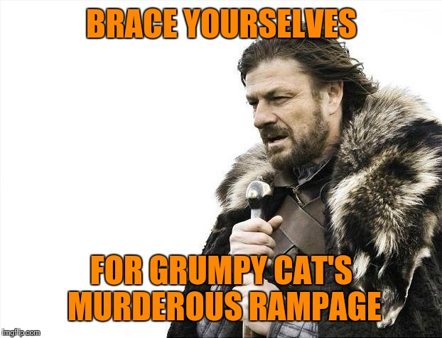 Brace Yourselves X is Coming Meme | BRACE YOURSELVES FOR GRUMPY CAT'S MURDEROUS RAMPAGE | image tagged in memes,brace yourselves x is coming | made w/ Imgflip meme maker