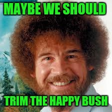 MAYBE WE SHOULD TRIM THE HAPPY BUSH | made w/ Imgflip meme maker