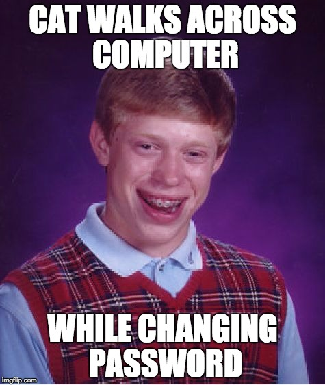 Bad Luck Brian Meme | CAT WALKS ACROSS COMPUTER WHILE CHANGING PASSWORD | image tagged in memes,bad luck brian | made w/ Imgflip meme maker