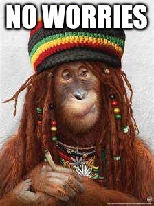 NO WORRIES | image tagged in rasta | made w/ Imgflip meme maker