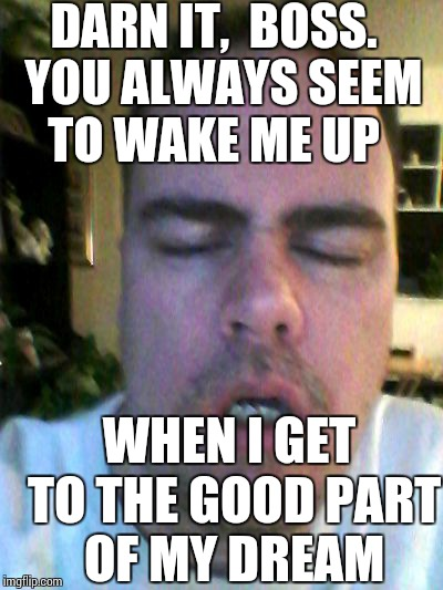 tired | DARN IT,  BOSS.  YOU ALWAYS SEEM TO WAKE ME UP WHEN I GET TO THE GOOD PART OF MY DREAM | image tagged in tired | made w/ Imgflip meme maker