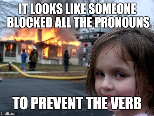 Disaster Girl Meme | IT LOOKS LIKE SOMEONE BLOCKED ALL THE PRONOUNS TO PREVENT THE VERB | image tagged in memes,disaster girl | made w/ Imgflip meme maker