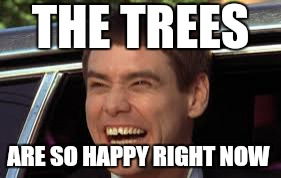 THE TREES ARE SO HAPPY RIGHT NOW | made w/ Imgflip meme maker