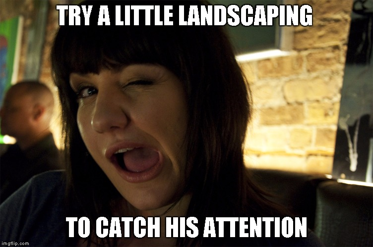 Wink | TRY A LITTLE LANDSCAPING TO CATCH HIS ATTENTION | image tagged in wink | made w/ Imgflip meme maker