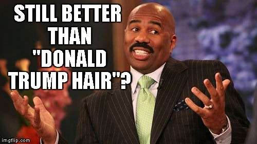 "Steve Harvey Meme | STILL BETTER THAN ""DONALD TRUMP HAIR""? 