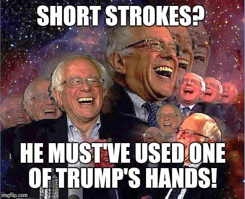 Bernie Laff | SHORT STROKES? HE MUST'VE USED ONE OF TRUMP'S HANDS! | image tagged in bernie laff | made w/ Imgflip meme maker