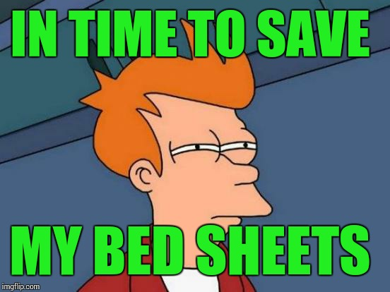 Futurama Fry Meme | IN TIME TO SAVE MY BED SHEETS | image tagged in memes,futurama fry | made w/ Imgflip meme maker