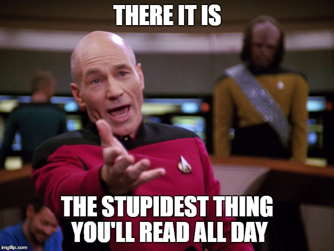 piccard | THERE IT IS THE STUPIDEST THING YOU'LL READ ALL DAY | image tagged in piccard | made w/ Imgflip meme maker