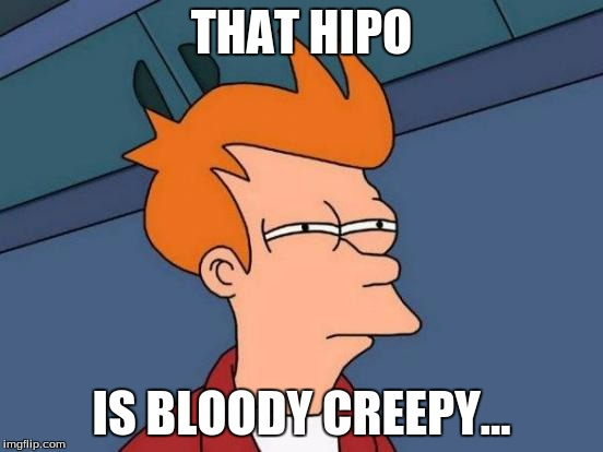 Futurama Fry Meme | THAT HIPO IS BLOODY CREEPY... | image tagged in memes,futurama fry | made w/ Imgflip meme maker
