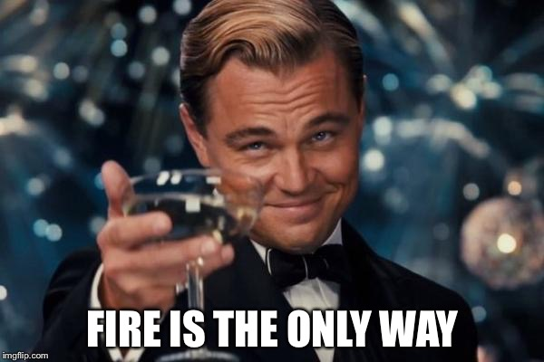 Leonardo Dicaprio Cheers Meme | FIRE IS THE ONLY WAY | image tagged in memes,leonardo dicaprio cheers | made w/ Imgflip meme maker